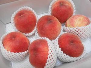 福島の桃が届きました - 小町の日々の暮らし