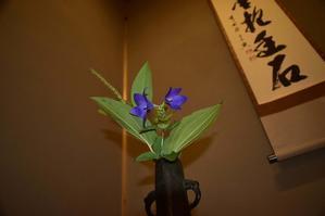 桔梗は秋の七草です。 - 懐石椿亭(富山市)公式blog