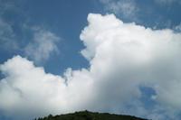 オニユリ、アジサイ、アサガオ・・・田んぼBで草刈りと草取り - 朽木小川より 「itiのデジカメ日記」 高島市の奥山・針畑からフォトエッセイ