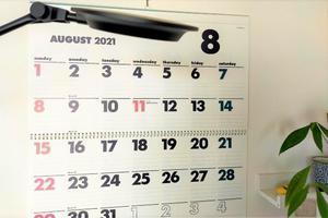 夏の予定と今年の振り返り - 美的生活研究所