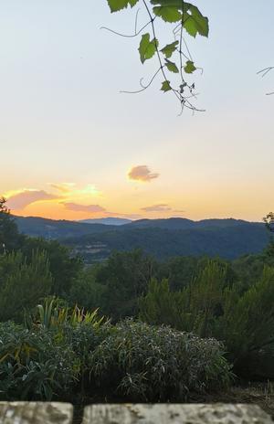 気楽な土曜日 - フィレンツェ田舎生活便り2