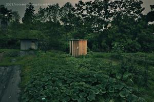 小さな小屋のある風景 -