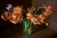 猫と花瓶、『スリープウォーカーズ』 - 世話要らずの庭