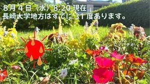 熱中症に厳重注意!!!! - ナガツナ(長崎大学とつながるブログ)