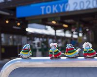 オリンピック・セーリング競技会場だった江ノ島 - エーデルワイスブログ