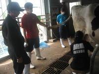 受け継がれるもの⑥ ~乾乳方法~ - 農大ブログ