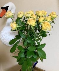 おすすめのお花 - 日々綴り