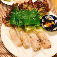 ベトナム蒸し春巻き - ~美・食・住~