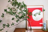 AKARI 絵紙を額装して飾る - 美的生活研究所