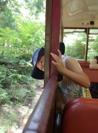 赤沢森林鉄道 - 山の布屋