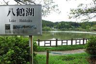 八鶴湖(はっかくこ)を一周 - 腎臓病との共存