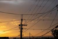 「朝焼けの光・・・」 - ほぼ京都人の密やかな眺め Excite Blog版