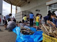 海岸漂着物でオリジナルランプ造り〜report 2〜 - (有)樋口建設ブログ