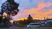 20210826 【自然】夜明け前 - 杉本敏宏のつれづれなるままに