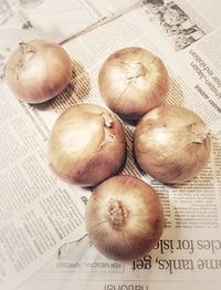 Onions - IL EST TROP TARD 時は過ぎゆく ... 2
