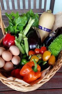 今日は野菜の日! - げんきの郷の日々