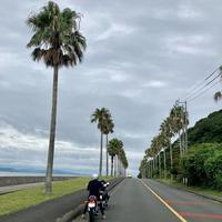 ガマフォルニア - 四代目志賀社長のブログ