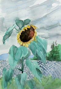 曇天の向日葵 - ryuuの手習い