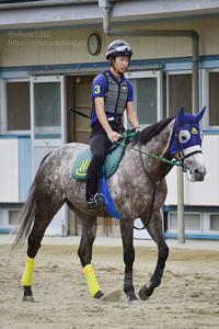 2017.9.16 馬の温泉☆ミライヘノツバサ【Miraieno Tsubasa】 - 青空に浮かぶ月を眺めながら