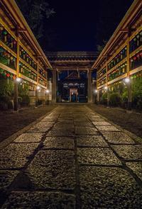 和田神社~風鈴祭ライトアップ - 鏡花水月