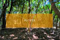 水の時代へ - プロトハウス通信〜住まいは生き方