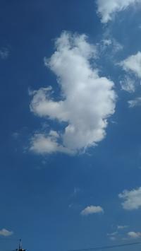 秋の雲に寄せる思い - アンのように生きる・・・(老育)