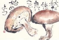 しいたけ・秋だ! - 北川ふぅふぅの「赤鬼と青鬼のダンゴ」~絵てがみのある暮らし~