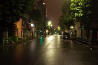 「築地の雨の夜」 - もるとゆらじお