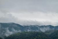 「雨上がりの京都西山」 - ほぼ京都人の密やかな眺め Excite Blog版