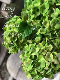 『IVORY 花教室 9 September 開催です~♬』 -  Flower and cafe 花空間 ivory (アイボリー)