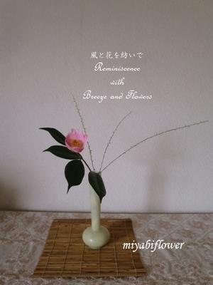 椿 西王母を生ける  引き算の生け花 - 風と花を紡いで