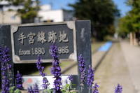 久しぶりに小樽散策〜スナップ散歩 - ハルウシナカンジ