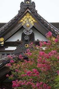 妙隆寺のサルスベリ - エーデルワイスブログ