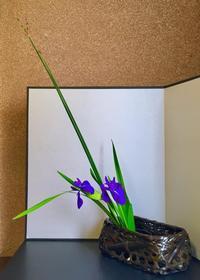 杜若 - 東京いけばな日記 花と暮らしと生活と