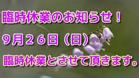 臨時休業のお知らせ! - アクアマイティー最新入荷情報BLOG