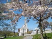 小説更新のお知らせ+聖オルバン教会に桜を添えて - fermata on line! イタリア留学&欧州旅行記とか、もろもろもろ