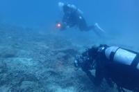 21.9.26 急に始まった、ベラ合宿 - 沖縄本島 島んちゅガイドの『ダイビング日誌』