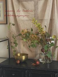 木の葉月 : はなの会 - tukikusa note