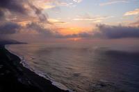伊良湖岬に遠征②(2021.10.11-12) - 週末バーダーのBirding記録