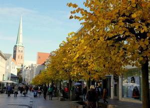 町内の秋まつり - 7つの塔が見える窓から in ドイツ