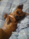 a0010389_214013.jpg