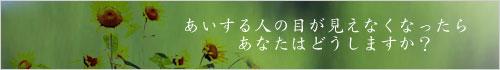 a0018379_225822.jpg