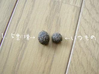 a0019148_95139.jpg