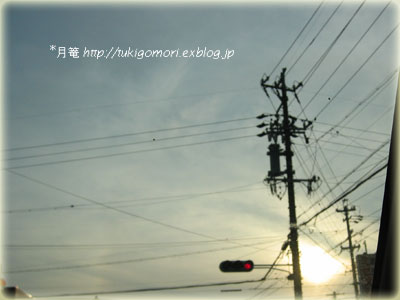a0019967_20411.jpg