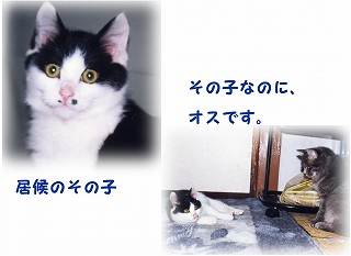a0021508_05557.jpg