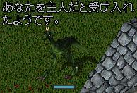 a0032214_15852.jpg