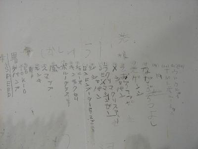 夢の紅白歌合戦_a0027105_11741.jpg
