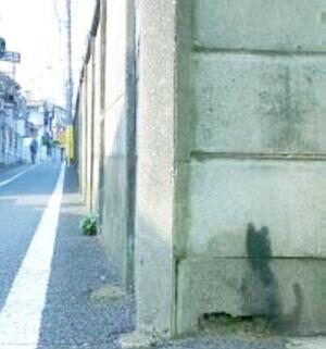 黒猫の壁画2