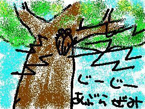 b0000772_22133523.jpg