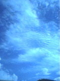 a0001712_1245646.jpg